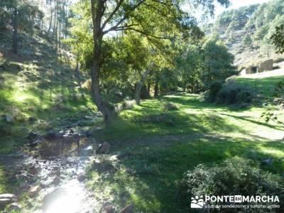 El Castañar de El Tiemblo , Un bosque mágico;ruta montaña madrid;rutas desde madrid